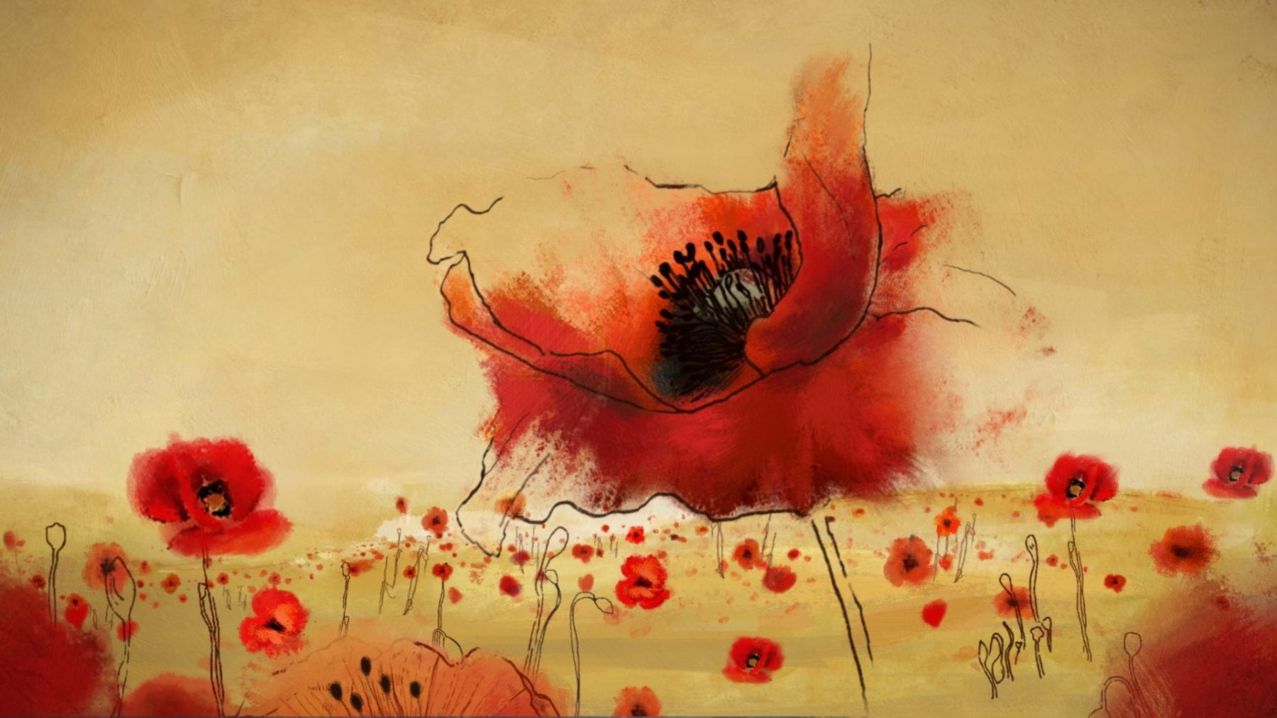 home-workout-challenge-poppy-appeal